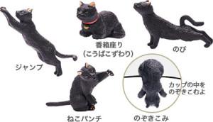 campaign_cat
